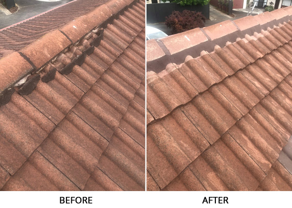 Repointing Before After