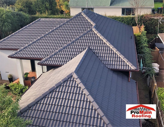 Roof Cleaning & Treatments