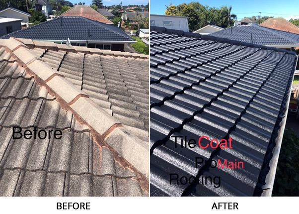 promain tile coating