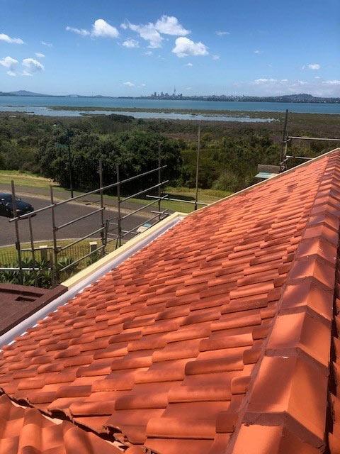 ProMain Tile Roof Maintenance