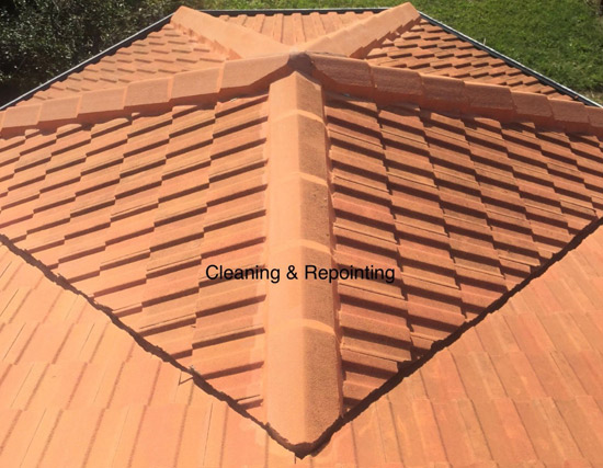 Repointing Tile Roof