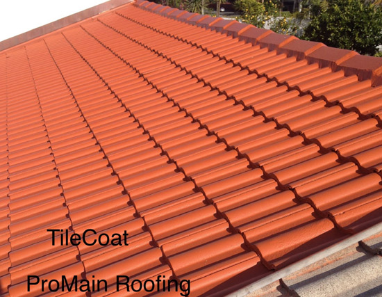 Tile Roof Painting Concrete and Clay